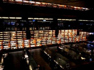 Biblioteca Centro de Arte Reina Sofia (Madrid)
